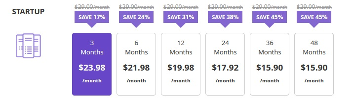 cheapest business hosting plan