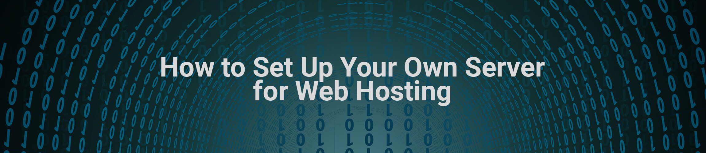 How to Set Up Your Own Server for Web Hosting